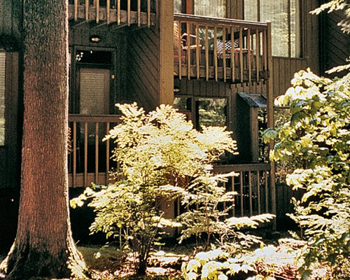 An exterior view of the resort unit with shrubs and trees.