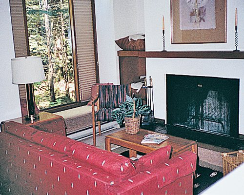 A well furnished living room with double pull out sofa and a fireplace.