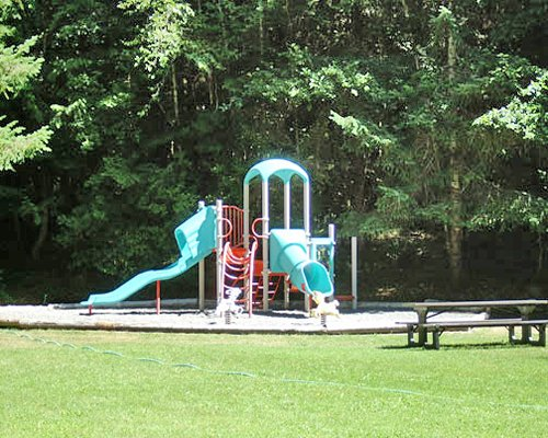 Playground with kids playscape surrounded by wooded area.