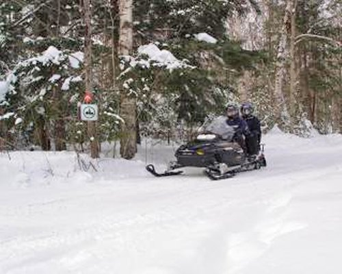 People riding snowmobile on a wooded area during winter.