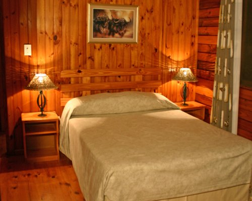 A wood themed bedroom with two lamps.