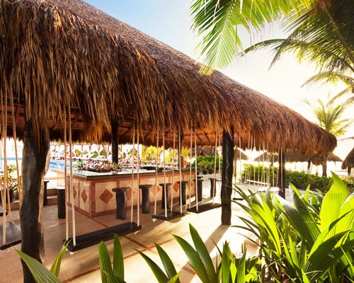 Outdoor thatched covered bar with swings.