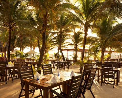 An outdoor fine dining area with coconut trees.