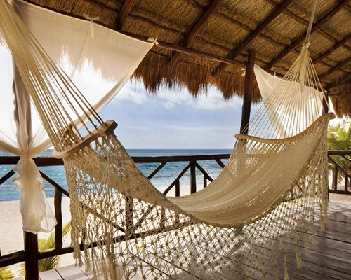 A hammock with an ocean view.