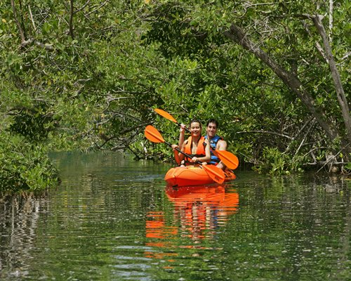 A couple kayaking on the water surrounded by the trees.