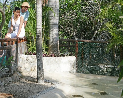 A couple watching the tortoise.