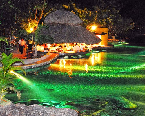 View of the pool with a thatched covered bar counter and neon lights at dusk.