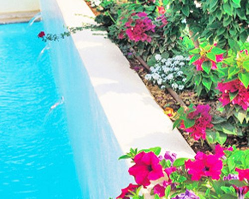 A view of an outdoor pool alongside flowers.