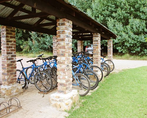 An outdoor bicycle parking lot surrounded by a wooded area.