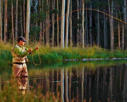 A man fly fishing in a lake surrounded by a wooded area.