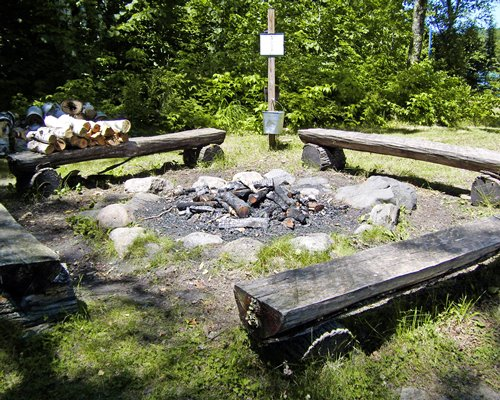 An outdoor campfire area surrounded by trees.