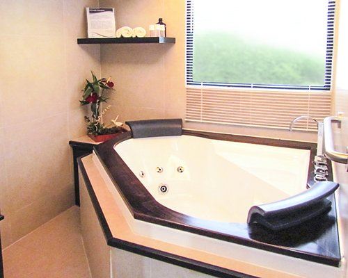 A bathroom with a bath tub and an outside view.