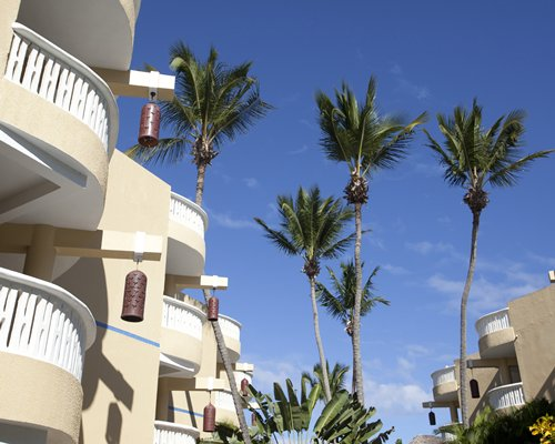 Exterior view of multiple unit balconies at Ocean Manor with palm trees.