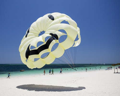 A view of the parachute on the beach alongside the ocean.