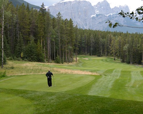 A man playing golf on the golf course surrounded by wooded area.