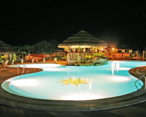 Large outdoor swimming pool with a thatched covered bar.