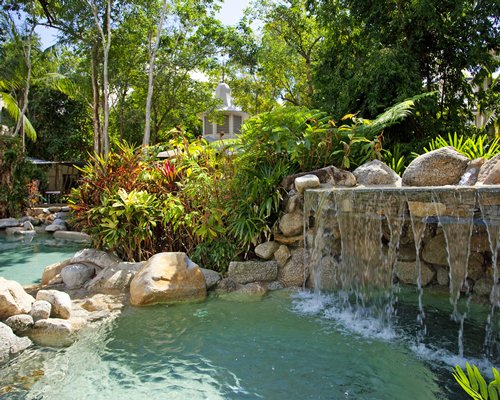 An outdoor grotto pool with trees.