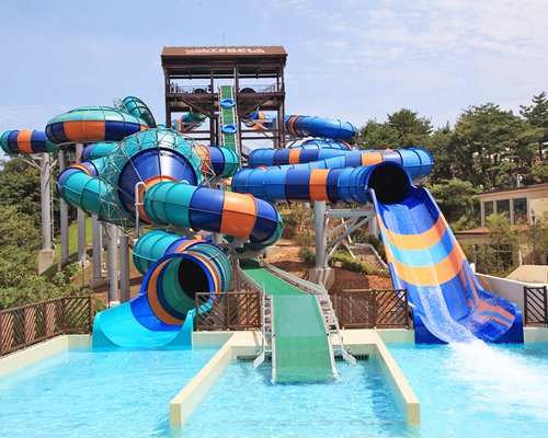 Waterpark with a slide surrounded by wooded area.