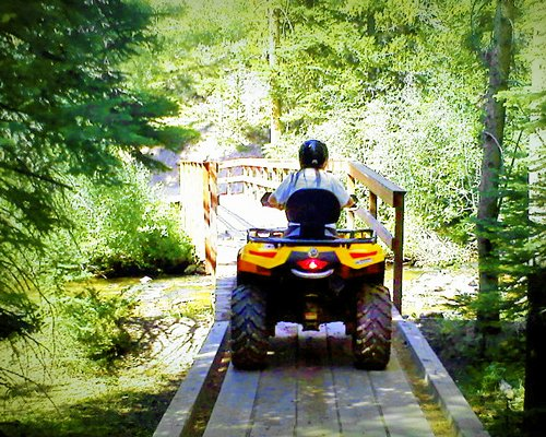 A man riding go kart at a wooded area.