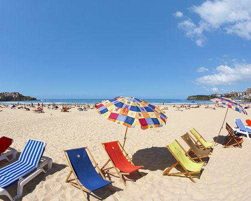 A view of the beach with chaise lounge chairs.