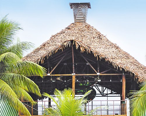 Thatched covered gazebo with palm trees.