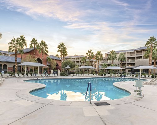 WorldMark Indio with outdoor swimming pool sunshades chaise lounge chairs and palm trees.