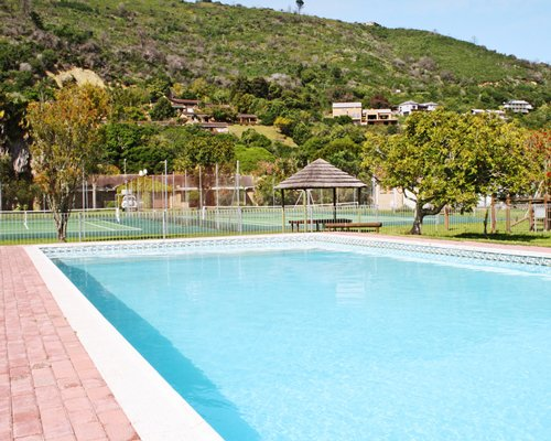 An outdoor swimming pool alongside trees and a hill.