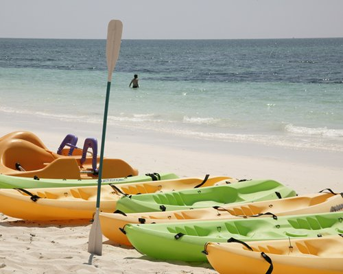 View of kayaks alongside the beach.