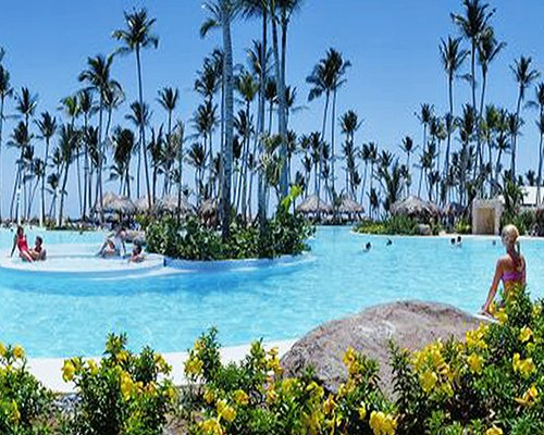 A large outdoor swimming pool with coconut trees and thatched sunshades.