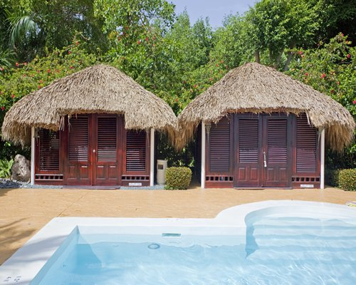 Outdoor swimming pool with thatched covered units at a wooded area.