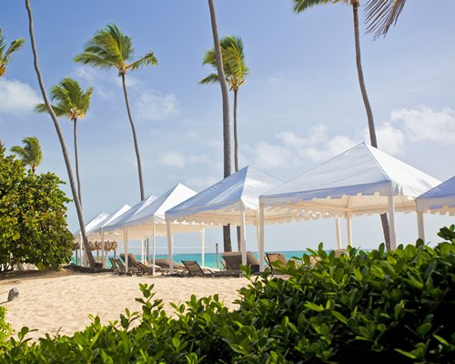 Scenic view of the beach with sunshades chaise lounge chairs and thatched sunshades.