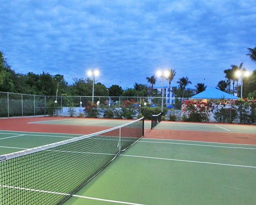 View of outdoor tennis courts surrounded by trees.