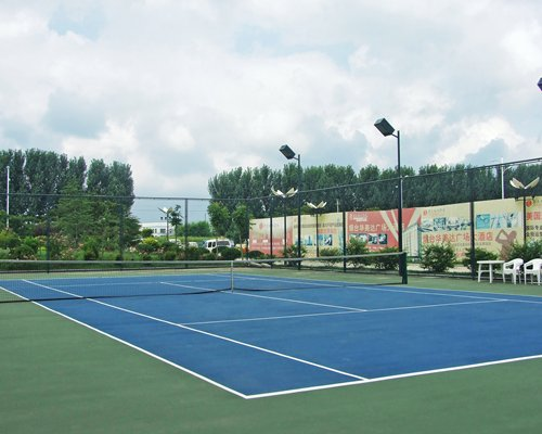 An outdoor paddle tennis court alongside the trees.