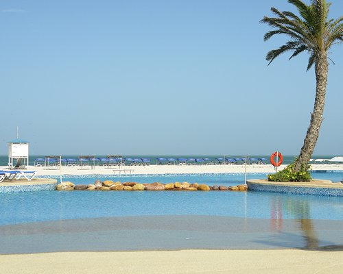 A beach view of the sea with a palm tree.