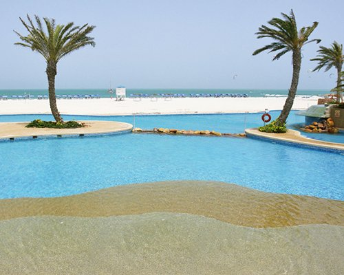 An outdoor pool with palm trees alongside the beach.