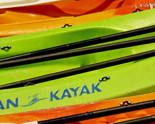 View of multiple kayaks.