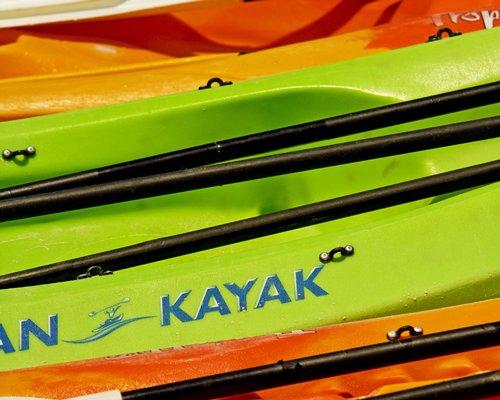 View of multiple kayaks.
