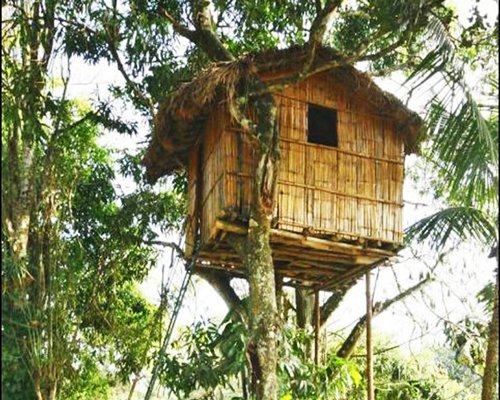 A tree house at Club Mahindra Thekkady.