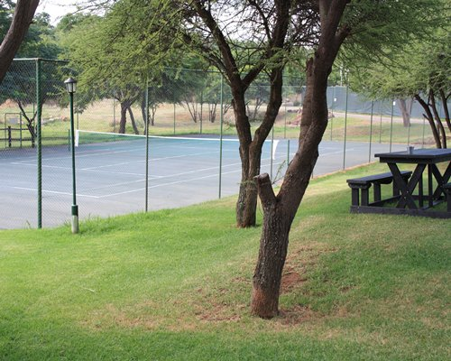 An outdoor picnic area alongside the tennis court surrounded by the trees.