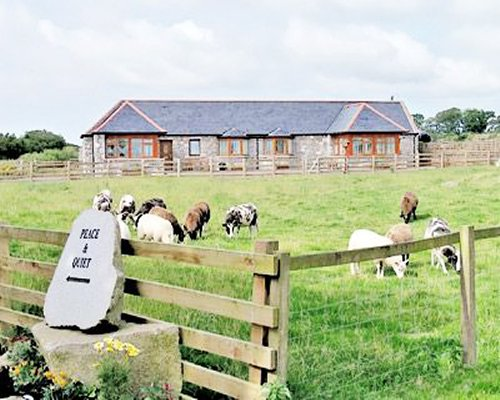 Exterior view of a unit alongside a farm with cows.