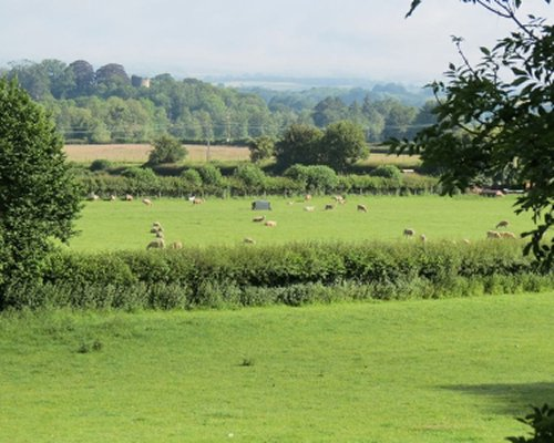 A view of farmland with hay bales.