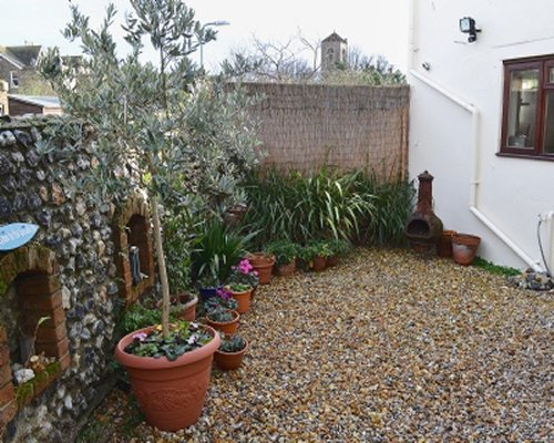 A private back area with potted plants and flowers.