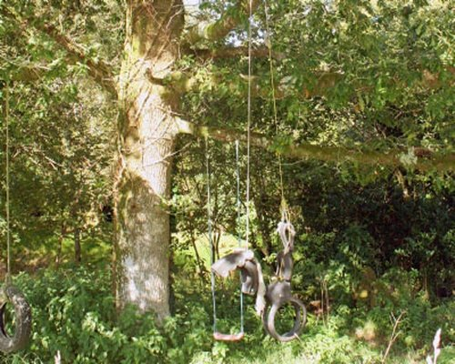 A view of horse tyre swing in the wooded area.
