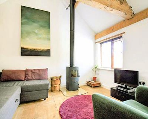 An interior view of living area with wood stove and television.