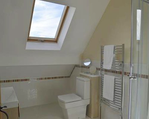 A bathroom with a shower stall a wall towel heater and a skylight.