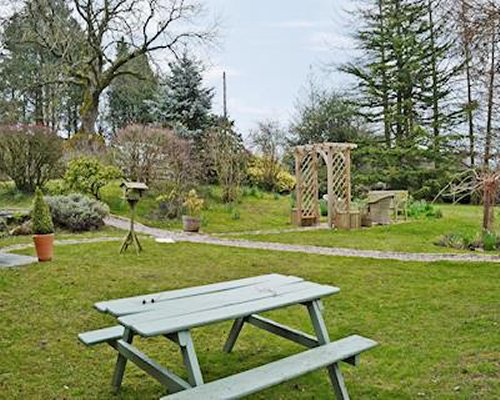 A scenic outdoor picnic area with a picnic seat alongside the trees.