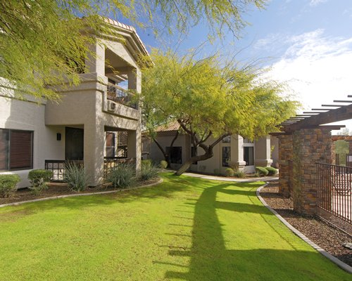 Raintree's Desert Arroyo Phoenix