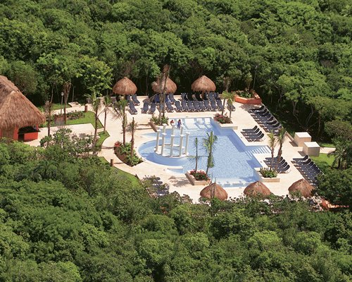 An aerial view of the outdoor swimming pool surrounded trees.