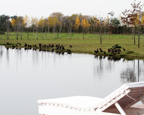 Pampas de Areco Resort do Campo