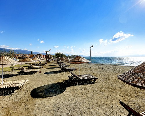 View of chaise lounge chairs and thatched sunshades alongside the beach.